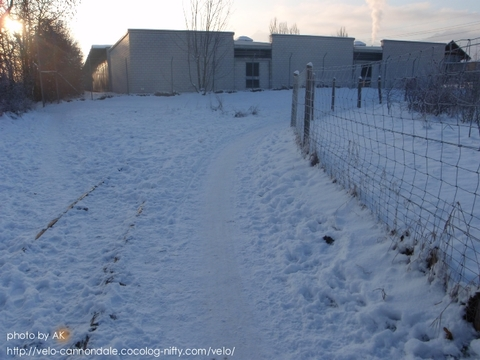 2010_snow_02